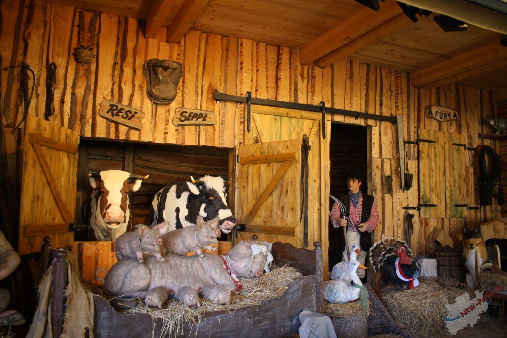 old mcdonald Old macdonald had a farm lyrics: old macdonald had a farm, e-i-e-i-o / and on his farm he had a cow, e-i-e-i-o / with a moo-moo here and a moo-moo there / here a moo / there a moo.