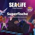 """Eröffnung der interaktiven Themenwelt """"Superfische"""" im SEA LIFE Oberhausen"""
