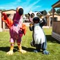 "Safariland Stukenbrock eröffnet im 50. Jubiläumsjahr Indoor-Spielpark ""Kattas Welt"" und Erlebnisresort mit Familienrestaurant ""Kattagaskar"""