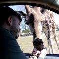 Safariland Stukenbrock startet in die Saison 20201